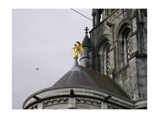 La Leggenda dell'Angelo d'oro di St. Fin Barre's Cathedral