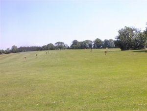 frankfield-golf-club_032704_full